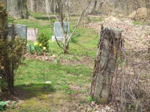 cemetery_wilderness8058
