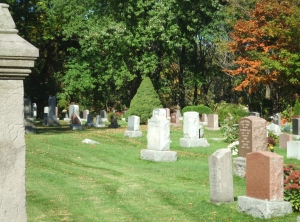 nice_cemetery_trees_oct_9