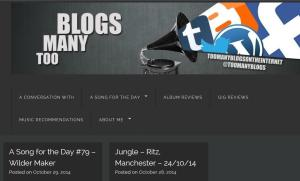 toomanyblogs_websitetheme