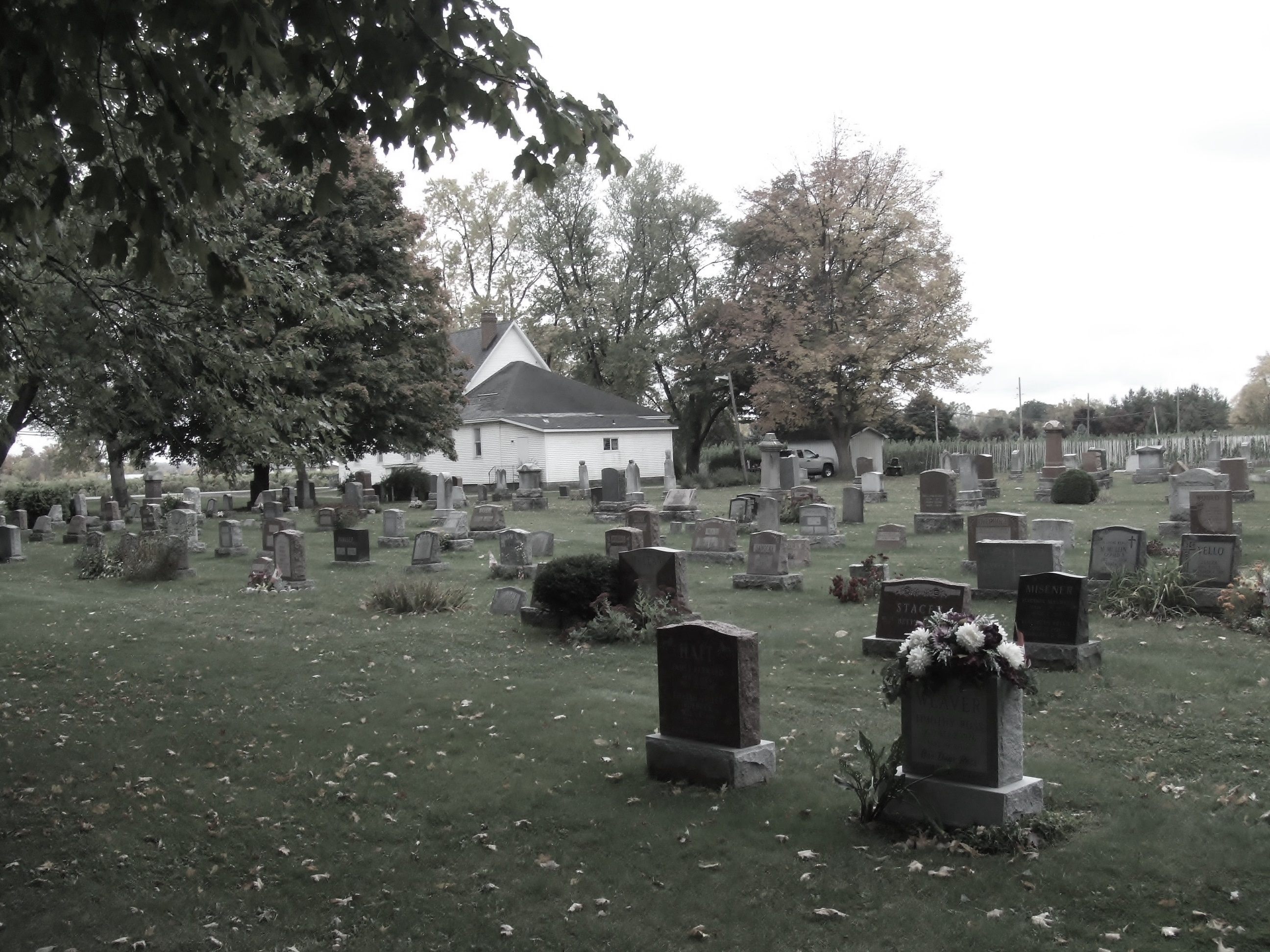 Serenity at a cemetery