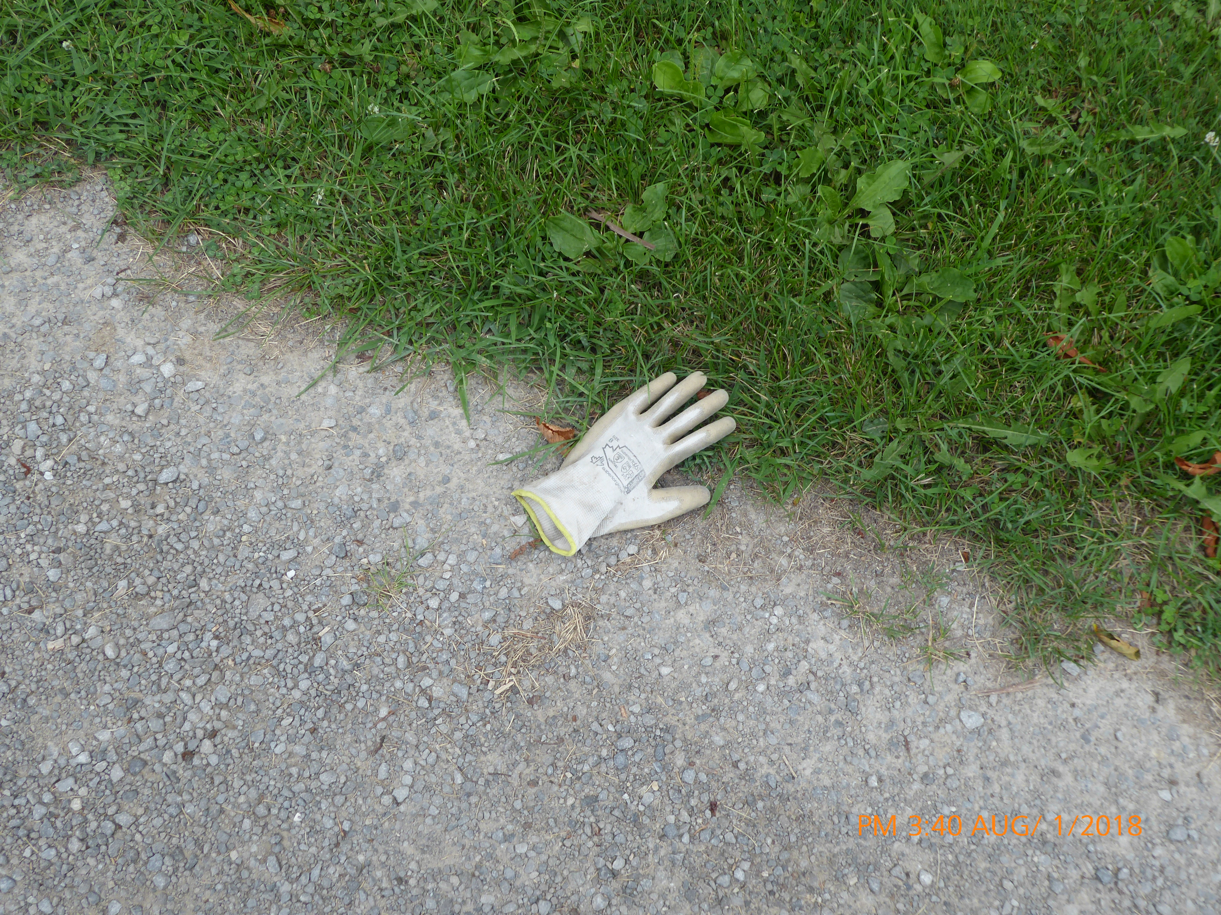 Single glove left behind